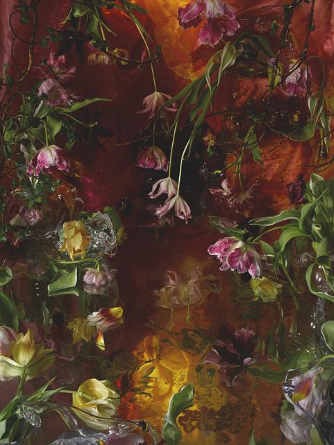 , 'The Celestial Marsh with the Wild Ducks,' 2015, Galerie Jordanow
