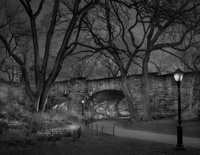 , 'Westside Sunrise - Deep In A Dream - Central Park,' 2009, Holden Luntz Gallery