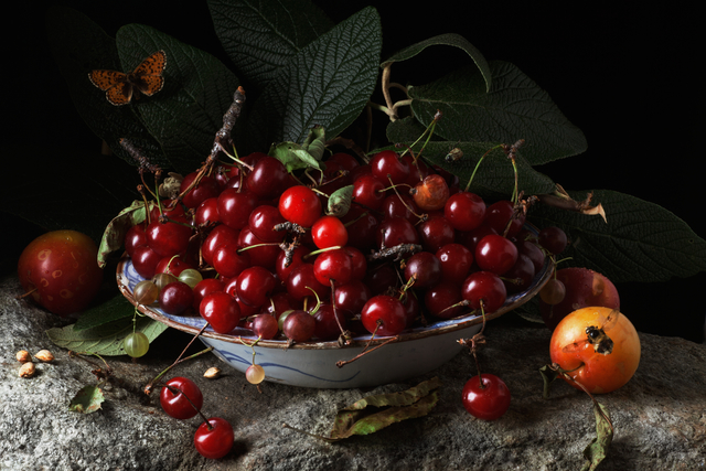 , 'Red Cherries and Plums, after G.G.,' 2011, Robert Mann Gallery