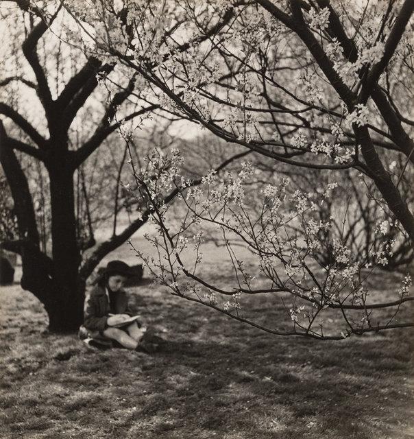 John Albok, 'The Artist, Central Park, New York', 1933, Photography, Gelatin silver, Heritage Auctions