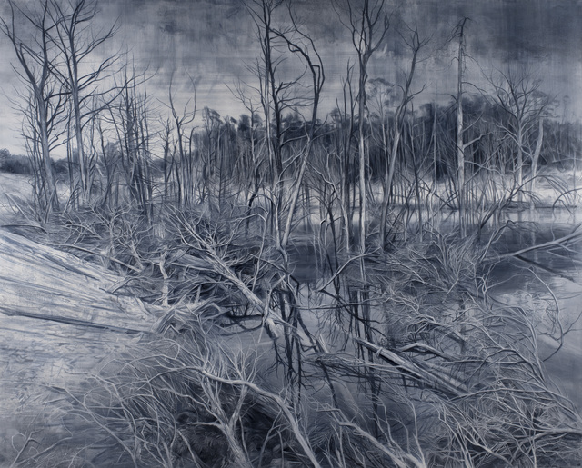 , 'Deadfall Reflections in Paynes Grey,' 2019, Nanda\Hobbs