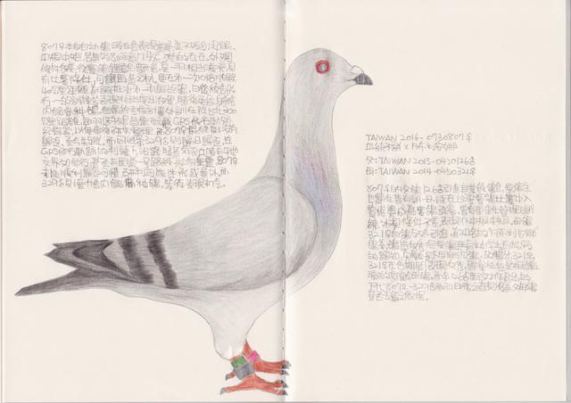, 'Pigeon - TAIWAN 2016-0730807,' 2018, Powen Gallery