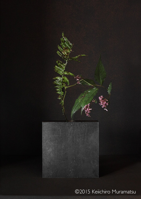 , 'A Stage Hydrangea 5-1,' 2015, Galerie Marie-Robin