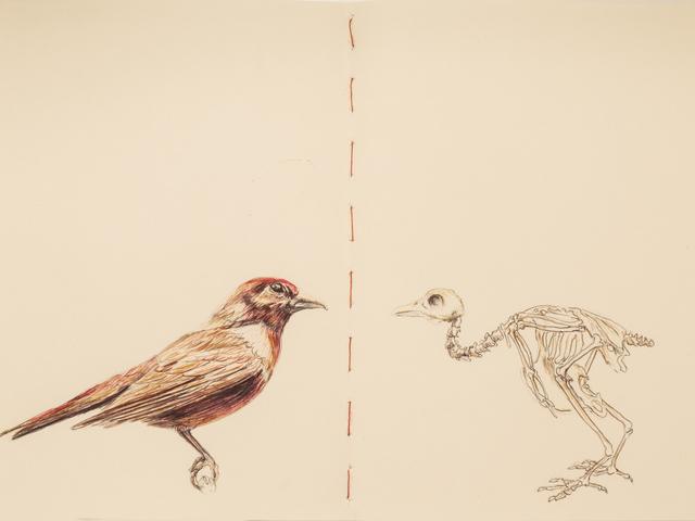 Carlos Alarcón, 'Paradoxes - 0004', 2019, Beatriz Esguerra Art