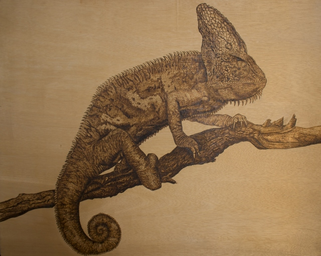 , 'Blending in - Chameleon,' , InLiquid