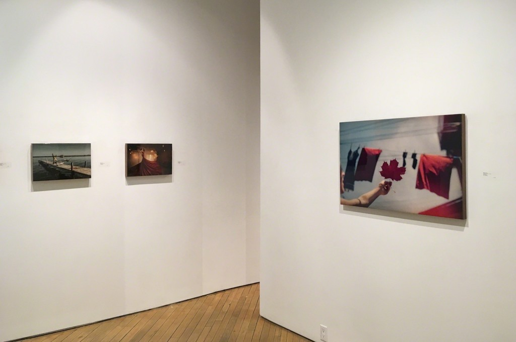 From left to right: Shane Gray's 'Matrix Restrung', 'Fliegende Franzosin', and 'Canadian Flag 1/5'