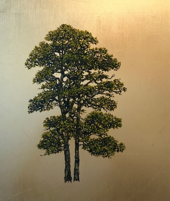 , 'Tree Project – Scotts Pine,' , Urbane Art Gallery