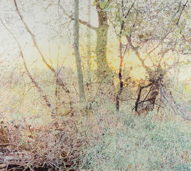 , 'Fall Evening, Pigeon Creek,' 2017, CK Contemporary