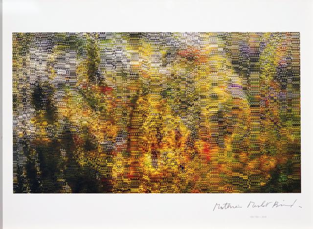 Mathieu Merlet Briand, '#Nature #139', 2019, Contemporary Art Platform Kuwait