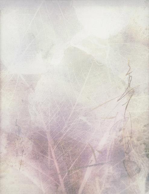 Chaco Terada, 'Veil for the Memories ', 2019, photo-eye Gallery