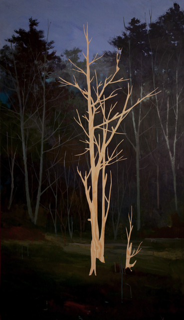 , 'Pine 2,' 2017, Diehl Gallery