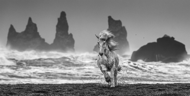 David Yarrow, 'White Horses ', 2018, Print, Archival Pigment Print, Maddox Gallery