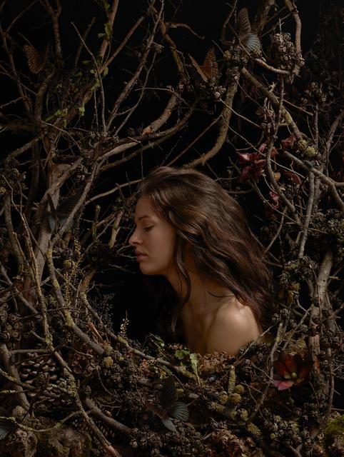 , 'Nameless Flower #4,' 2014, Galerie Isabelle Lesmeister