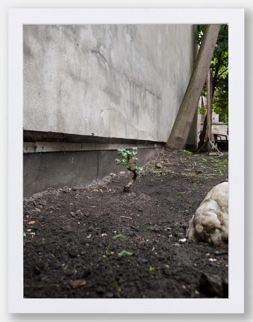 , 'Untitled,' 2013, Capsule Shanghai