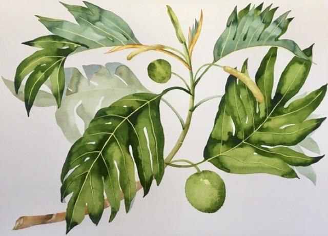 Idoline Duke, 'Breadfruit Branch', 2019, ARC Fine Art LLC