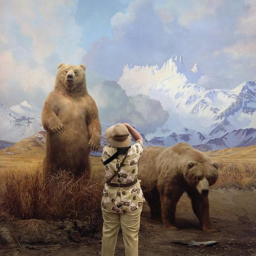 , ''Brown Bears' ,' 2006, Dominik Mersch Gallery