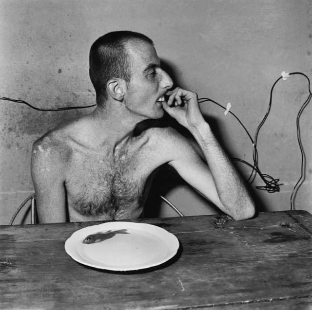 Roger Ballen, 'lunch time', 2001, Aura Gallery