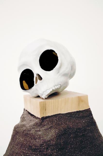 , 'Skull,' 2016, GRIN
