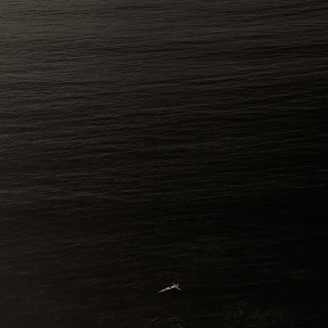 , 'Crónicas de un desembarco 12,' 2006, Fifty Dots