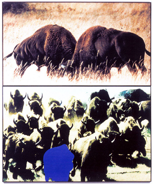 , 'Two Bison/Group of Bison (With Blue Shape),' 1990, Marian Goodman Gallery