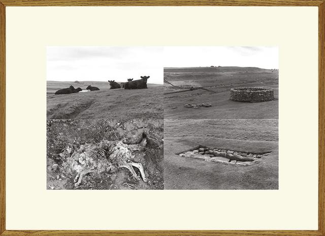 , 'Untitled (England - USA),' 1969-1970, espaivisor - Galería Visor