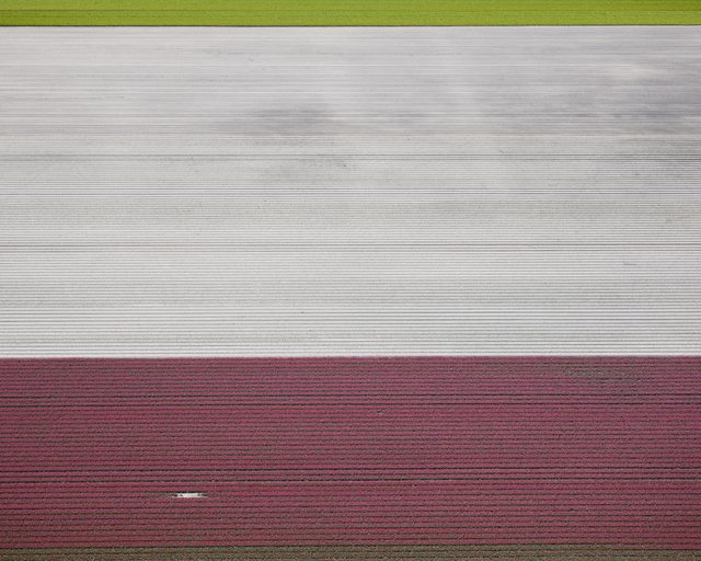 , 'Veld 02, Noordoostpolder, Netherlands,' 2016, Gilman Contemporary