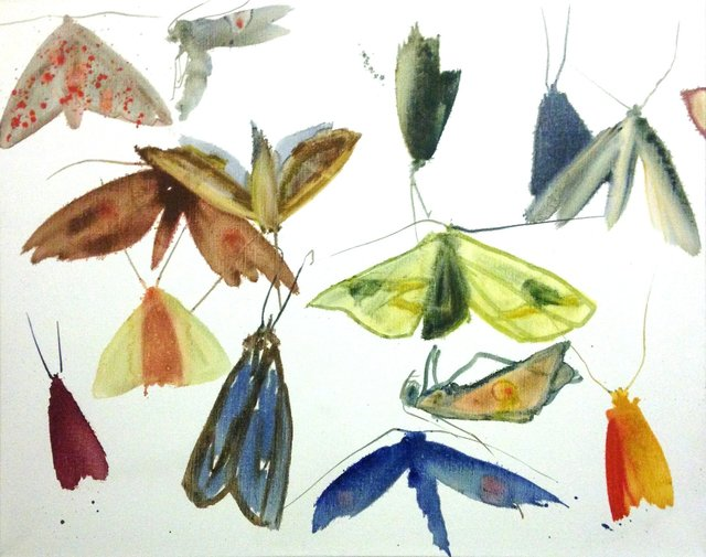 , 'Untitled V (Moths),' 2010, Rebecca Hossack Art Gallery