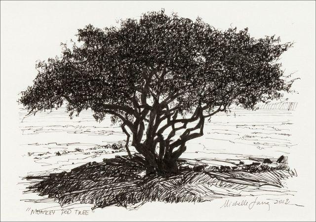, 'Monkey Pod Tree Study ~ Kihei, HI,' 2018, The Guild of Boston Artists