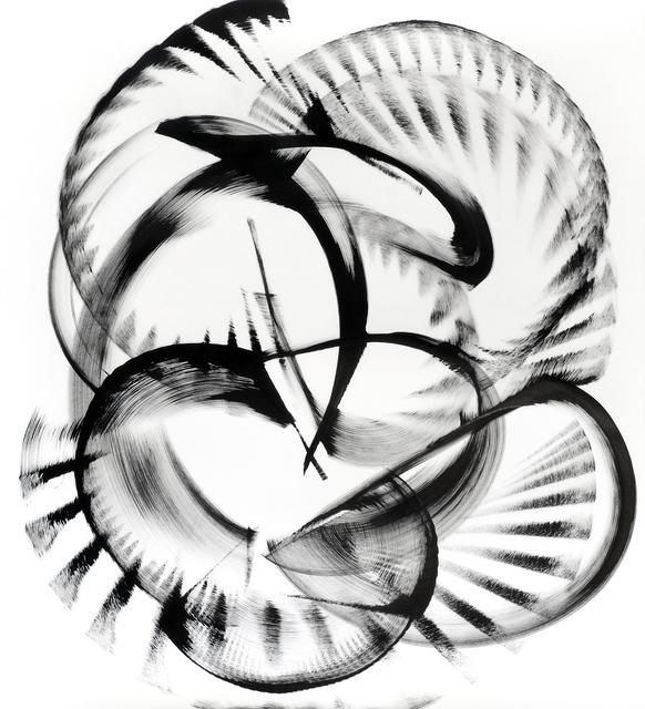 , 'Encephalartos woodii,' 2016, Saatchi Art