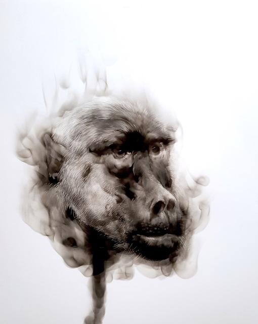 , 'Baboon,' 2017, David Krut Projects