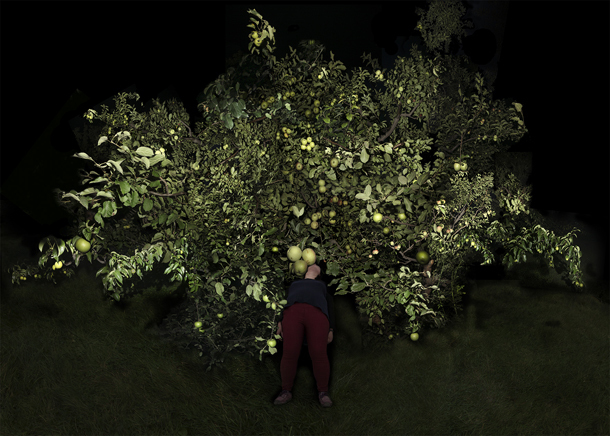 , 'Tree- 1  ,' 2015, Foam Fotografiemuseum Amsterdam
