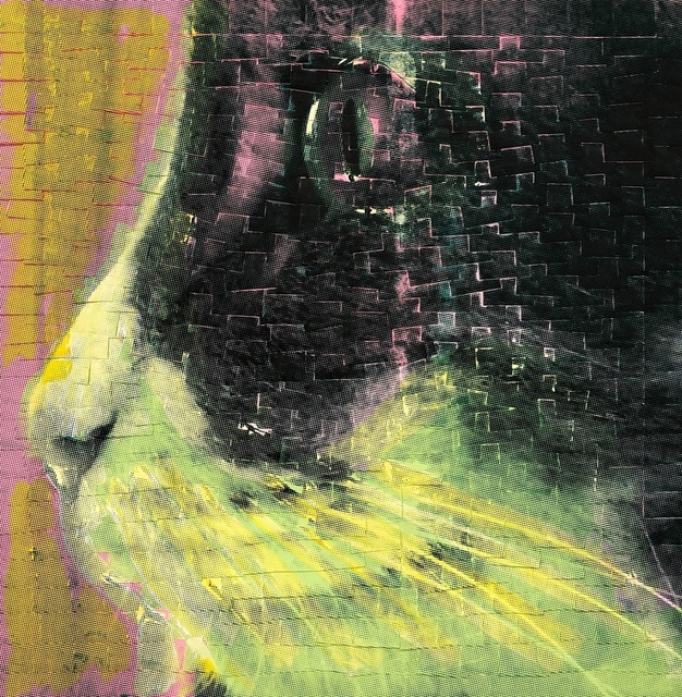 , 'I Thought I Saw A Cat,' 2018, Ekavart Gallery