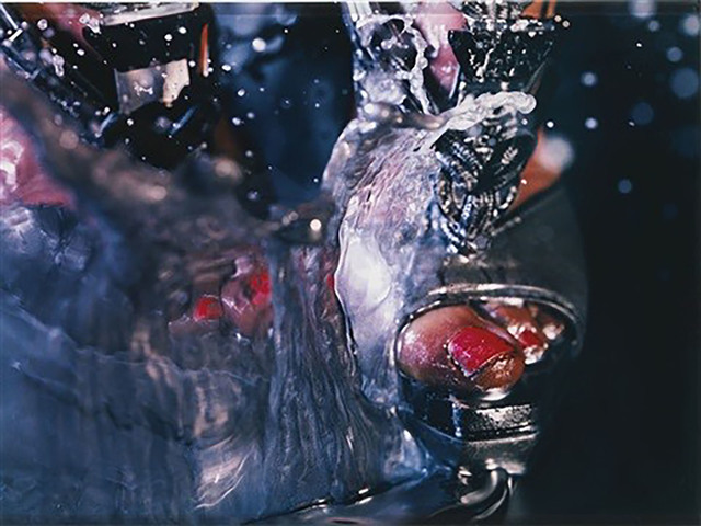 Marilyn Minter, 'Swell', 2010, Provocateur Gallery