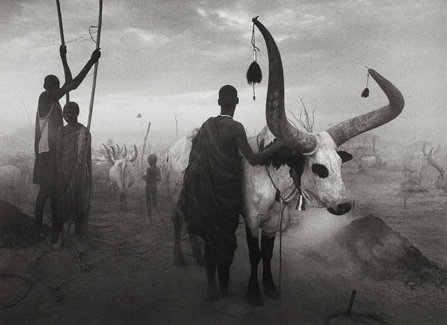 , 'Dinka group at Pagarau, Southern Sudan, from the series Genesis,' 2006, Yancey Richardson Gallery