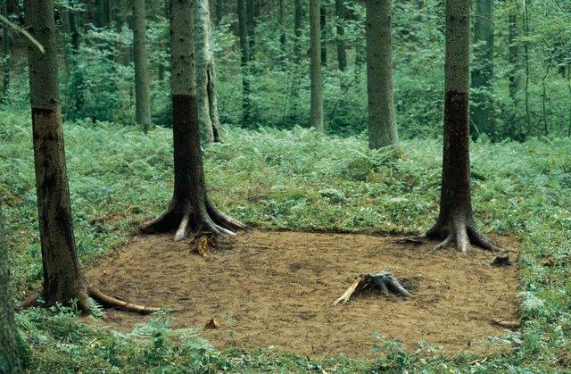 , 'Waldputz,' 2000, Cultural Avenue
