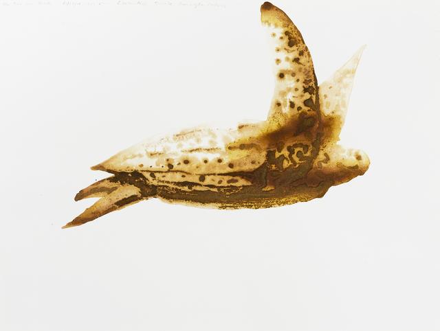 , 'Leatherback Turtle (Dermochelys coriacea),' 2014, Parrish Art Museum