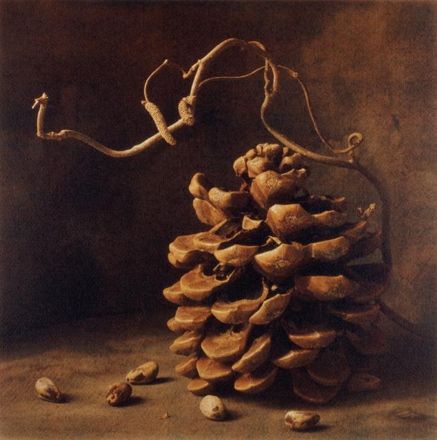 , 'Winter Pine Nuts II,' , Gallery 270