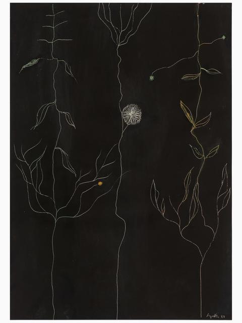 , 'Photo-Graffia,' 1981, Galleria Zero