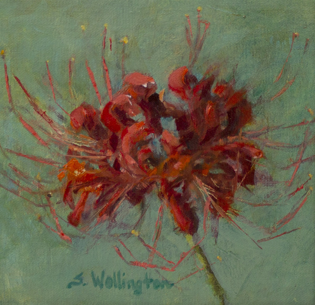 Susan Wellington, 'Spider Lily', 2019, Caron Gallery