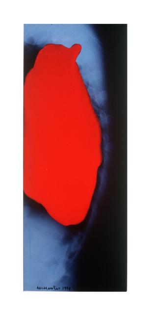 , 'sem título da série Marcasna Transparência,' 1998, Mercedes Viegas Arte Contemporânea