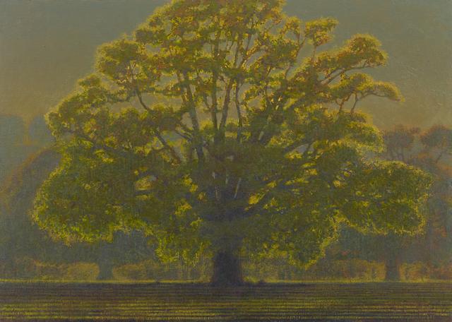 , 'Backlit Autumn Oak, Rousham,' 2017, John Martin Gallery