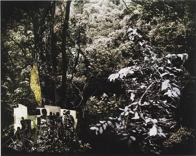 , 'Catanguera,' 2009, Galería Joan Prats