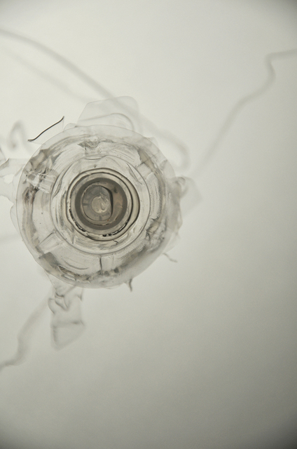 Laurent Lamarche, 'Translucida Organidée (échantillons 6)', 2009, Art Mûr