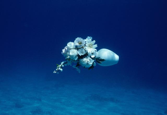 Elspeth Diederix, 'White Flowers Still Life', 2007, Casemore Kirkeby