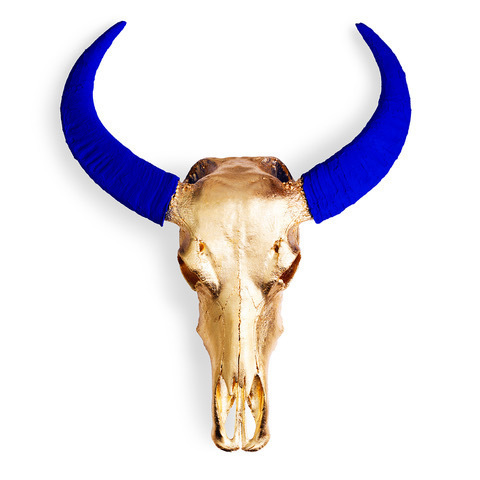 , 'Chinese Water Buffalo Skull – Gold Skull with Blue Horns on White - Small,' 2018, M1 Fine Art