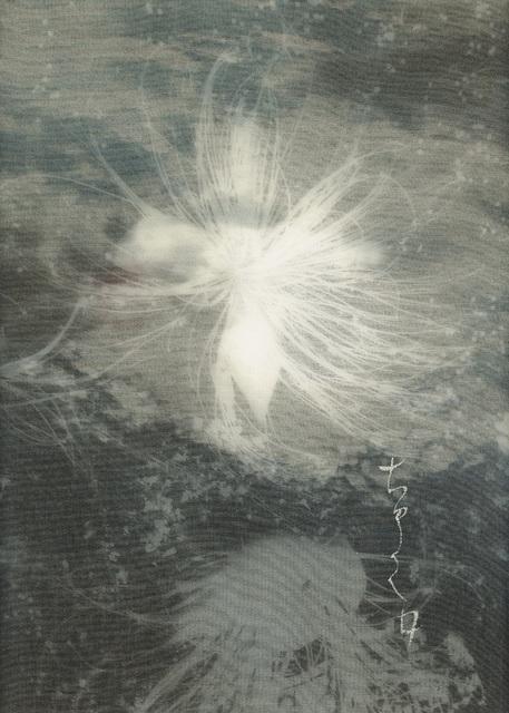 Chaco Terada, 'Nocturne V', 2015, photo-eye Gallery