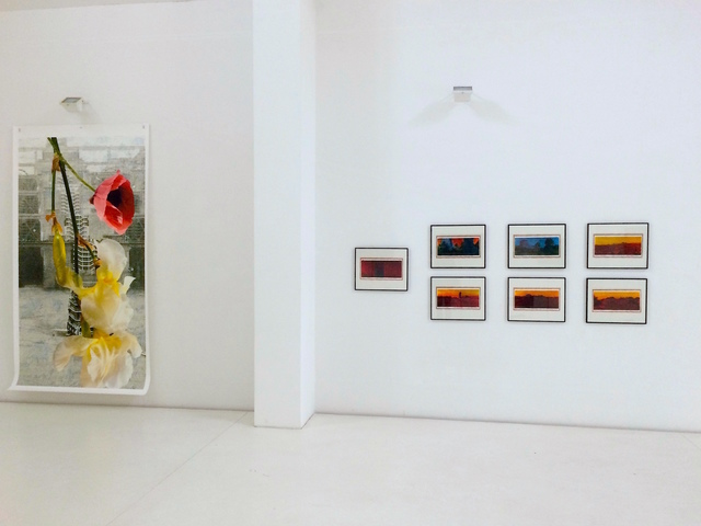 , 'Faits & Gestes, Barrages des Trois Gorges,' 2014, Brigitte March International Contemporary Art