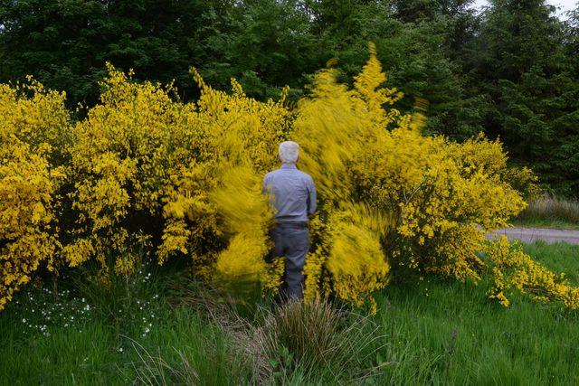 , 'Gorse walk. Dumfriesshire,' 13, Marta Moriarty
