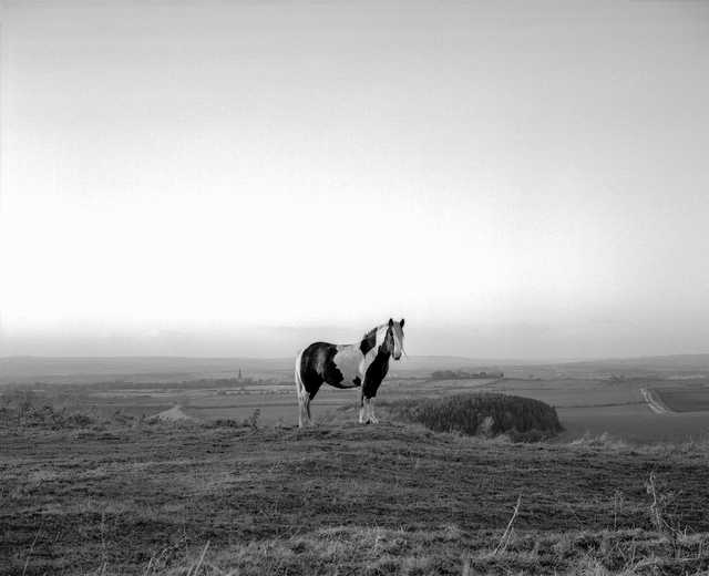 , 'County Durham,' 2002, The Photographers' Gallery