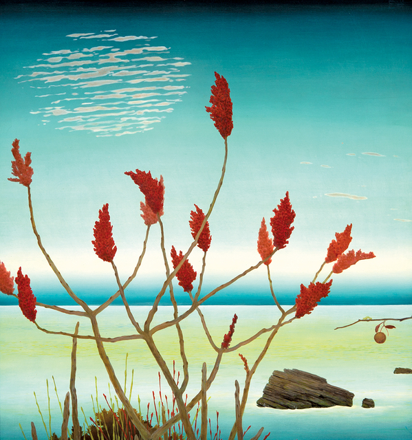 , '14 Point Staghorn Sumac,' , Dowling Walsh